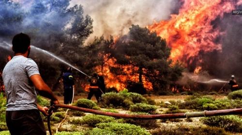 Yunanistan Eğriboz Yarımadasında orman yangını