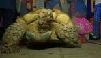 Kaplumbağa Julienin 50nci yaş günü partisi