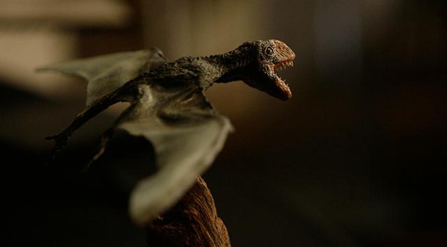 ABDde yeni bir uçan dinozor türü keşfedildi