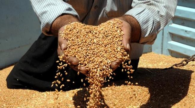 Tarım ürünleri ithalatında tarife kontenjanları belirlendi
