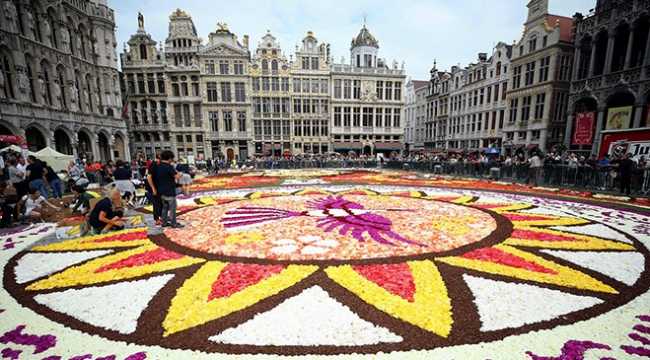 Brüksel Grand Palace meydanına 500 bin çiçekli dev halı