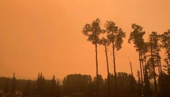 Kanadada orman yangınları nedeniyle olağanüstü hal kararı