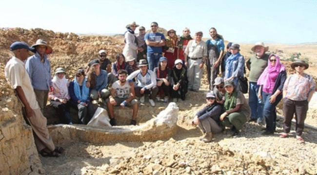 Cezayirde bulunan 3 milyon yıllık fil fosili sergilendi