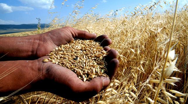 Tarım ve Orman Bakanlığından bin 274 projeye 245 milyon lira hibe