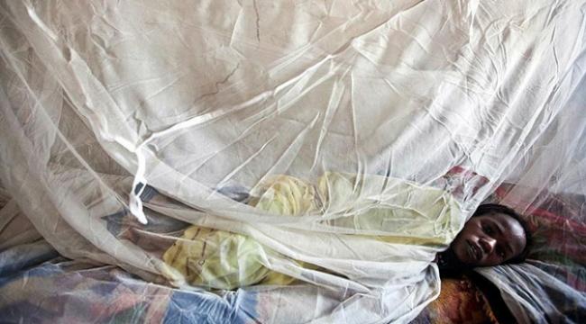 Nijerya sıtma ile mücadele ediyor