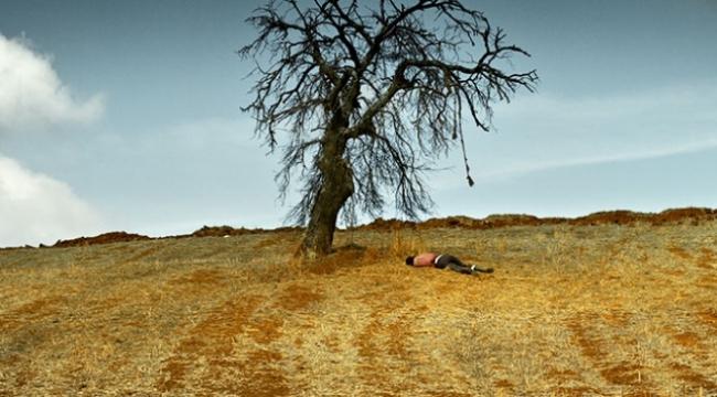 Türkiyenin Oscar adayı Ahlat Ağacı