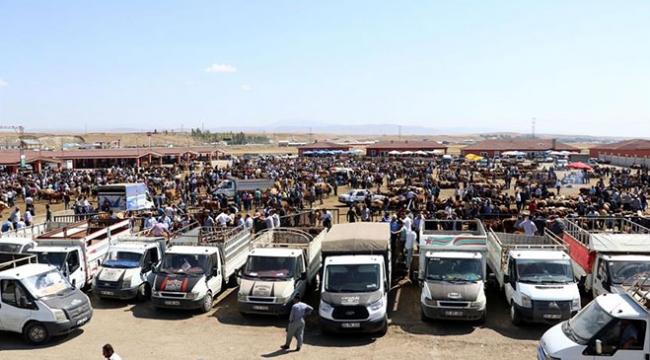 Doğu Anadoluda kurban pazarlarında hareketlilik