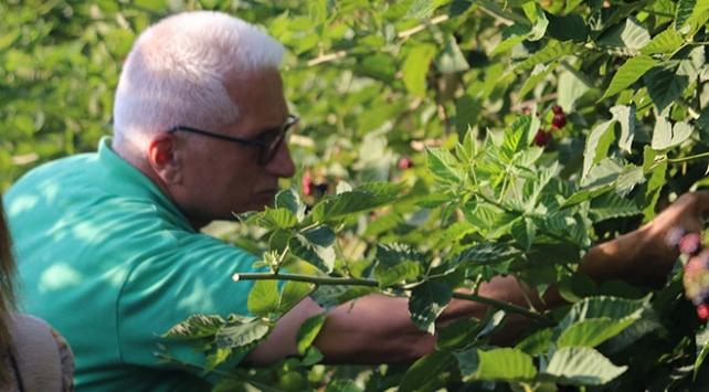 Siirtte üretilen elmalar 8 ülkeye ihraç ediliyor