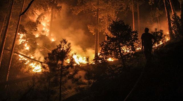 Kütahyada çıkan orman yangınına müdahale ediliyor