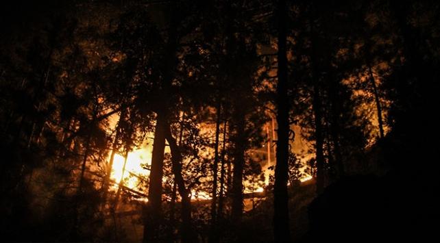 Kütahyada çıkan orman yangını kısmen kontrol altına alındı