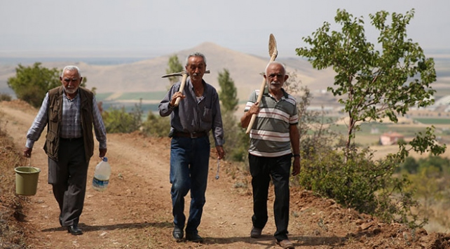 Üç emekli arkadaş dağdaki yabani hayvanlara su temin ediyor