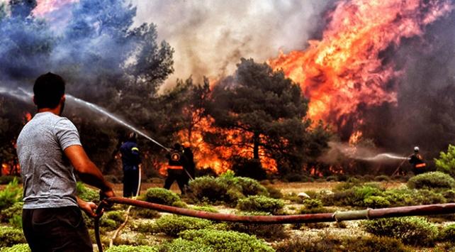 Yunanistan tarihindeki en ölümcül yangın felaketinde ölü sayısı artıyor