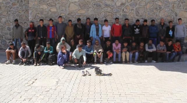 Vanda 244 göçmen yakalandı