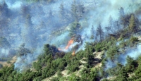 Salihli'de makilik alanda yangın