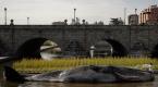 Dev balina heykeli ile okyanuslardaki kirliliğe dikkati çektiler