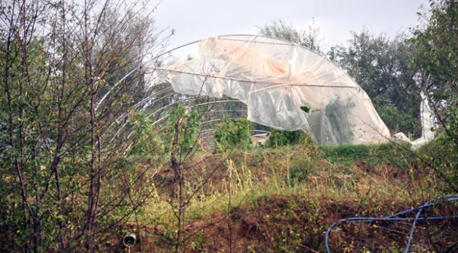 Kastamonudaki sağanak ve dolu meyve ağaçlarına büyük zarar verdi