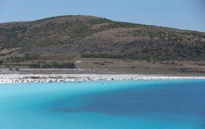 """""""Türkiyenin Maldivleri"""" bu yaz binlerce ziyaretçiyi ağırladı"""