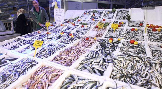 Karadenizli balıkçıların ağları istavritle doldu