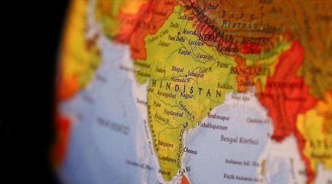 Vahşi hayvanlar Hindistanda 79 kişiyi öldürdü