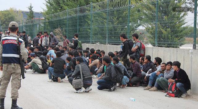 Edirnede 313 göçmen yakalandı