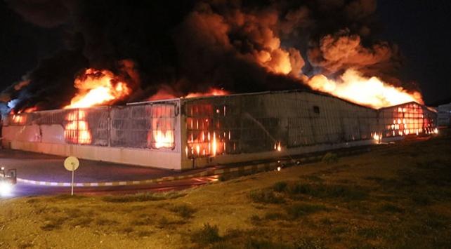 Aydında gıda fabrikasında yangın