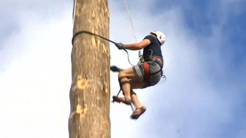 İngiltere'de 25 metrelik ahşap direğe en kısa sürede çıkmak için yarıştılar