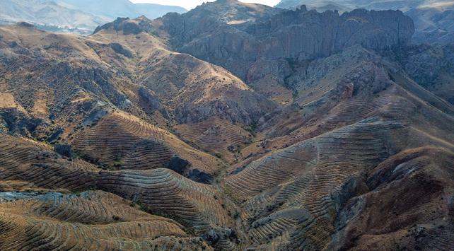 Aras Dağlarında erozyonla mücadele hamlesi