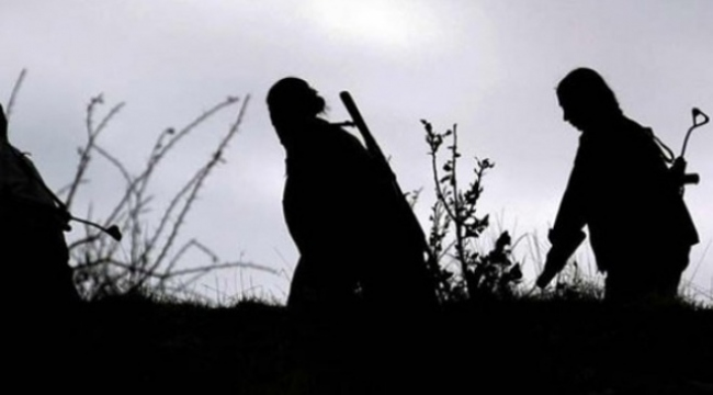 Bölücü terör örgütündeki çocuk istismarı ifadelere yansıdı