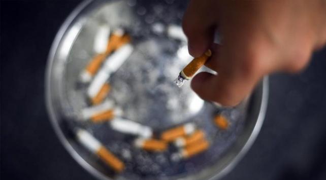 Dünya Sağlık Örgütüne göre sigara çevreye de zarar veriyor
