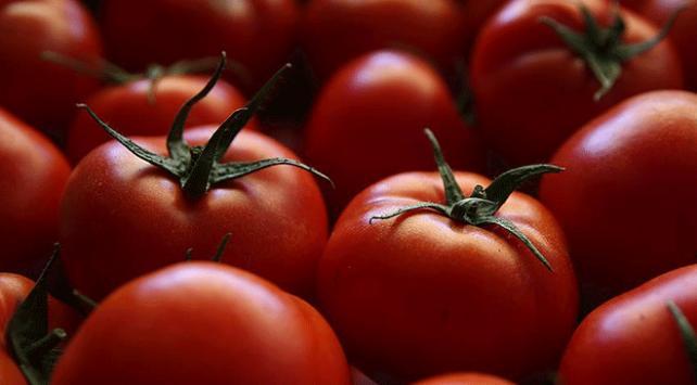 Eylül ayında fiyatı en çok artan ürün domates oldu