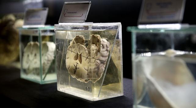 Bursa Sağlık Tarihi Müzesi tıp tarihine ışık tutuyor