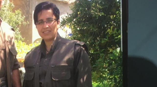 PKK/KCKnın Belçika sorumlusu Batmanda yakalandı
