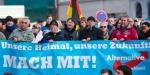 """Almanyanın aşırı sağcı partisi AfDden """"fişleme planı"""""""