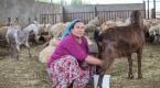 """""""15 Ekim Dünya Kadın Çiftçiler Günü"""""""