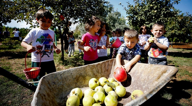 Anaokuluna kurulan çiftlikte çocuklar hayvanlarla iç içe büyüyor