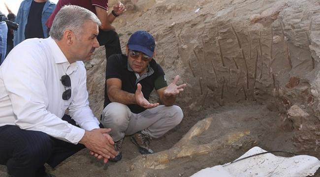Kayseride 2 metrelik fil kafatası bulundu