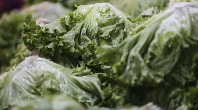 Yeşil yapraklı sebzeler sarı nokta hastalığını önleyebilir
