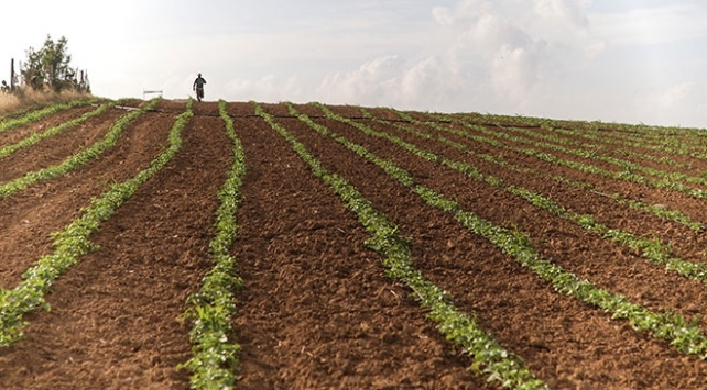 2B arazilerinin devrinden 3 yılda yaklaşık 2 milyar lira gelir bekleniyor
