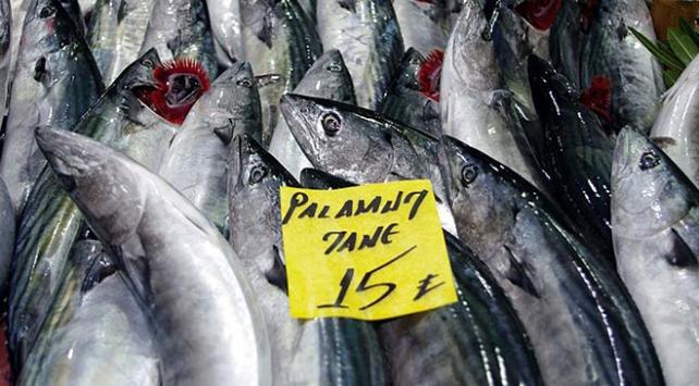 """""""Denizin kırmızı etli balığı""""na rağbet"""