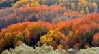 Bayburtta sonbahar renkleri