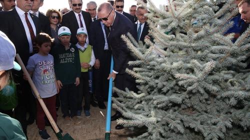 Cumhurbaşkanı Erdoğan öğrenciler ile fidan dikti