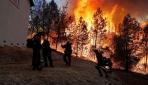 Californiada orman yangını: 27 bin kişi tahliye edildi
