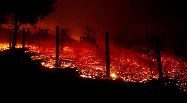Californiadaki orman yangını 9 can aldı