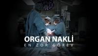 Organ naklinde zor görev: Organ Nakli Koordinatörlüğü