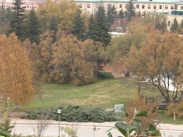 TBMM bahçesi hazan mevsimi renklerine büründü
