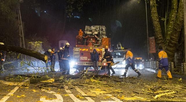 Sarıyer'de tünel girişine devrilen ağaç yolu trafiğe kapattı