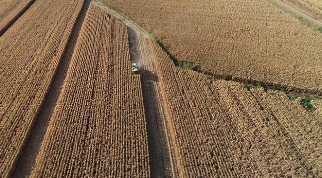 Çiftçilerin Hazine arazilerini kiralayabilmesi için son fırsat