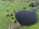 Kızılırmak Deltası UNESCO Dünya Doğal Miras Listesi yolunda