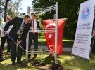 Gelibolu meşesi Melbourne'da dikildi
