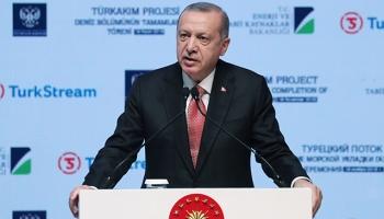 Cumhurbaşkanı Erdoğan: Türkiye-Rusya iş birliği geniş yelpazede ilerliyor